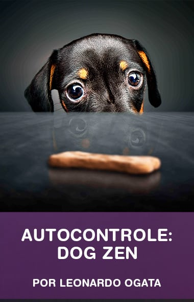 Dog Zen - Tenha um cão com um super autocontrole