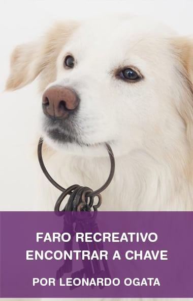 Faro - Encontrar a chave