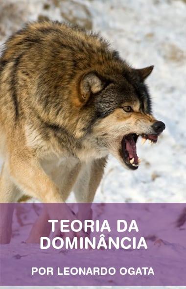 Teoria da Dominância - Afinal, meu cão é um lobo?