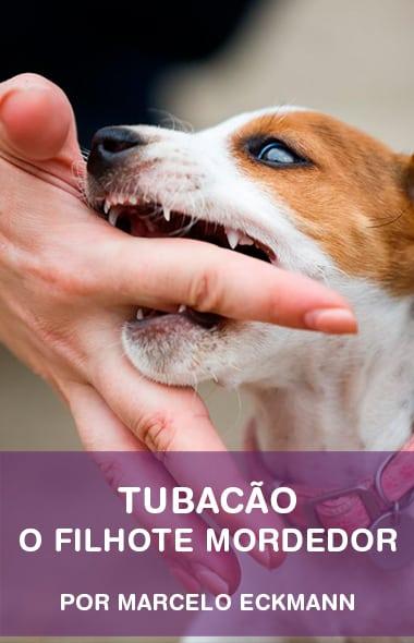 Tubacão - O Filhote Mordedor