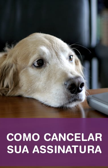 Como cancelar