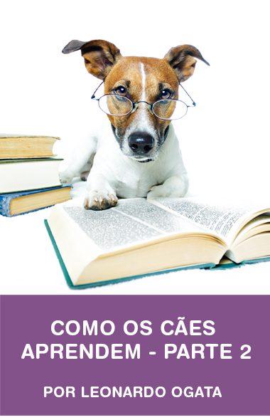 Como os cães aprendem - parte 2 por Leonardo Ogata