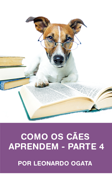 Como os cães aprendem - parte 4