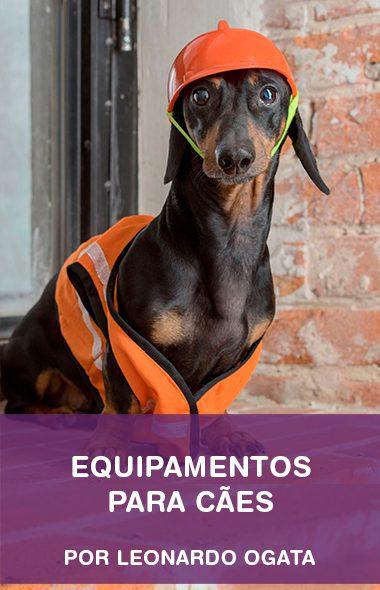 Equipamentos para cães por Leonardo Ogata