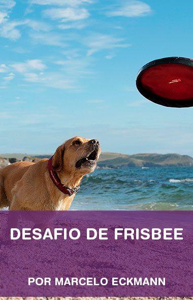 Desafio de frisbee