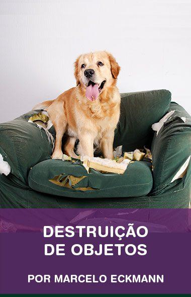 Destruição de objetos