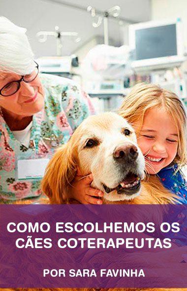 Como escolhemos os cães coterapeutas com Sara Favinha