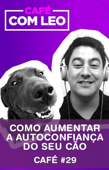 Café com Leo #29 - Como aumentar a autoconfiança do seu cão